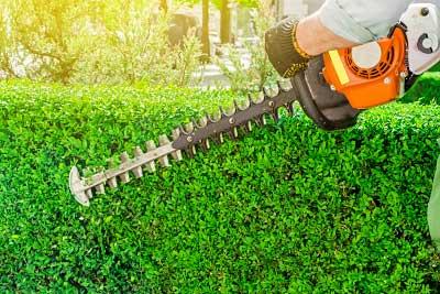Hedge Cutting Wirral