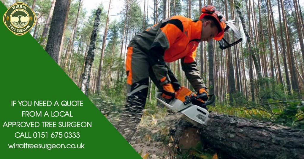 Chester Tree Surgeon